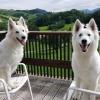 Lola en Emily in Oostenrijk