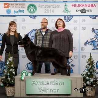 2400_amsterdam_winner_2014_kynoweb_ernst_von_scheven_december-14-2014_13_04_24