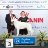 group_1_3_dogshow_eindhoven_2018_kynoweb__20180202_16_37_02